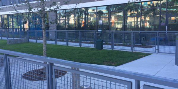 Central Station – Dog Park